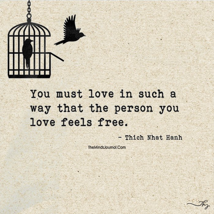 Image result for freedom love bird pics