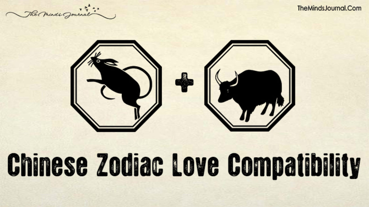 Chinese Zodiac Love Compatibility: What Sign Is Your Soul Match?