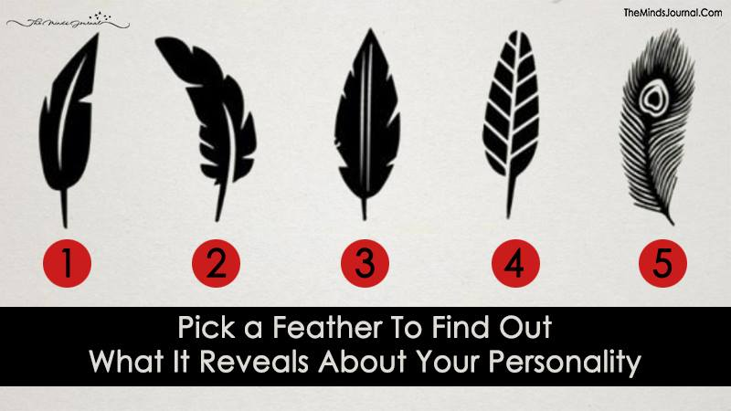 Pick a Feather, Discover What It Says About Your Personality