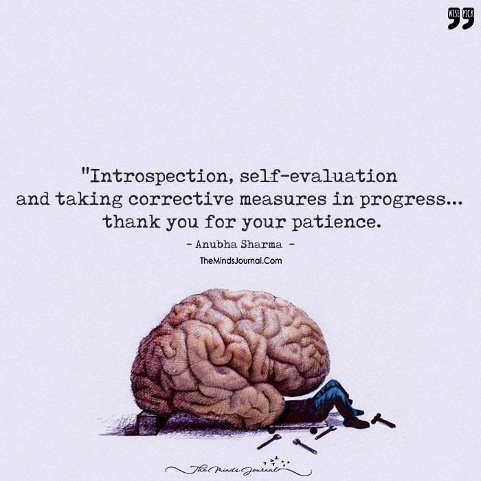 Introspection, Self Evaluation And Taking Corrective Measures In Progress – Thank You For Your Patience!.