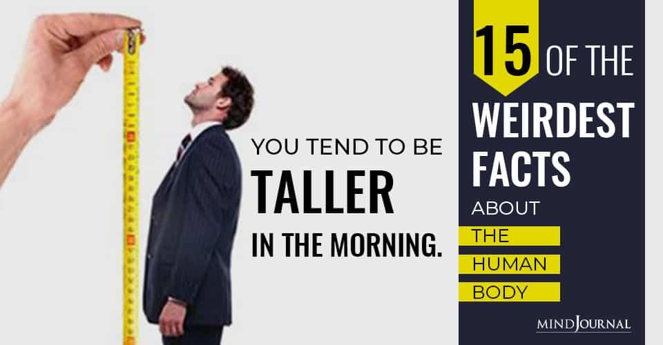 Weirdest Facts The Human Body