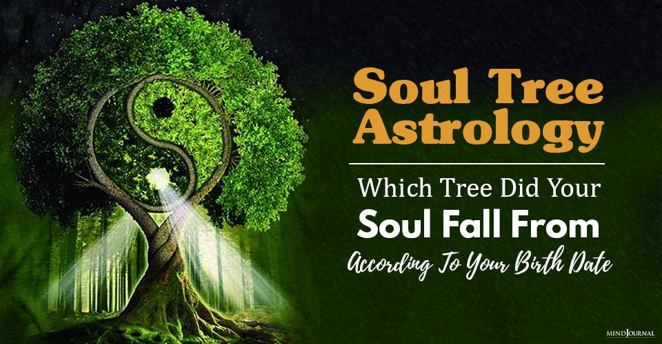 soul tree astrology
