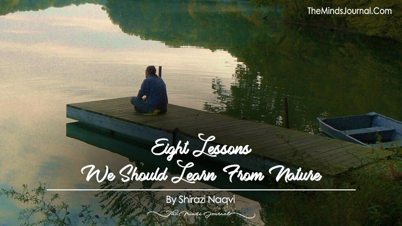Eight Lessons We Should Learn From Nature
