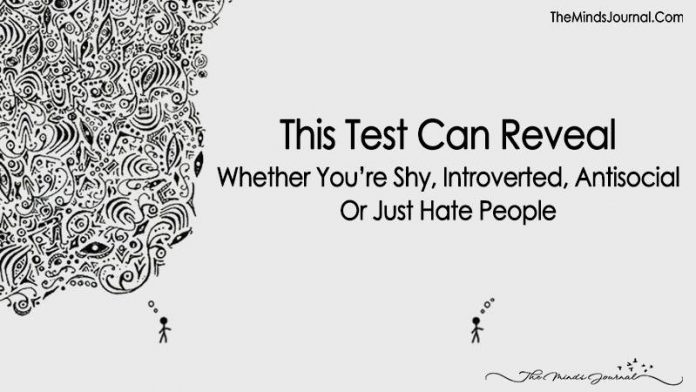 This Test Can Reveal Whether You're Shy, Introverted, Antisocial Or Just Hate People