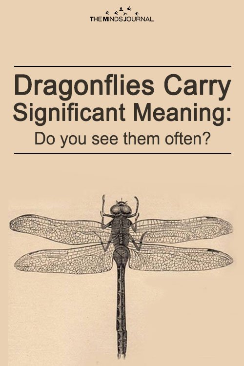 Spiritual Significance of Dragonfly