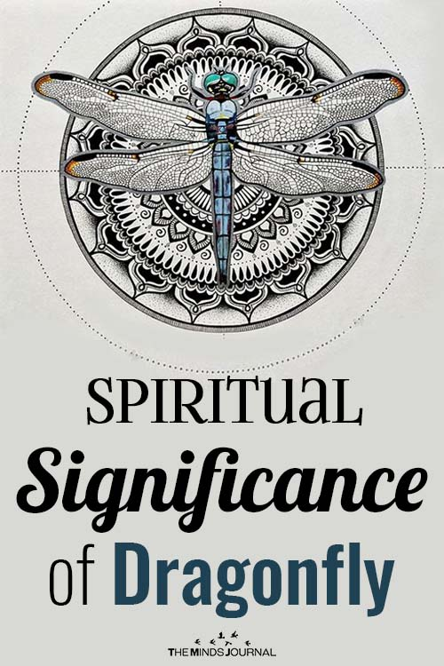 Significance of Dragonfly