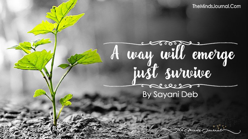 A Way Will Emerge, Just Survive !