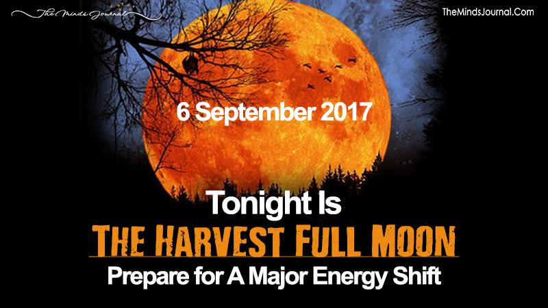Tonight Is The Harvest Full Moon – Prepare For A Major Energy Shift