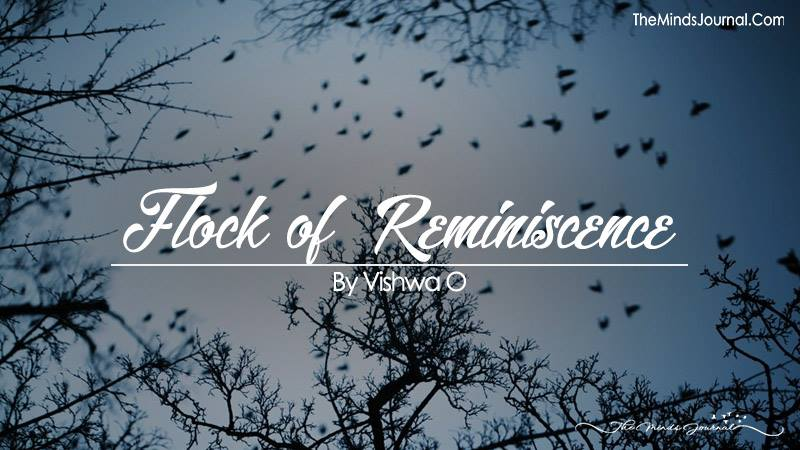 Flock of  Reminiscence