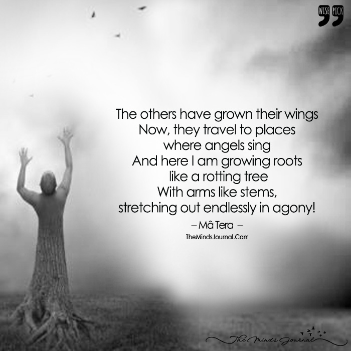 This Is How You Will Grow... Strong Grounding And a Desire To Soar, Don't Give Up, There's Always More!