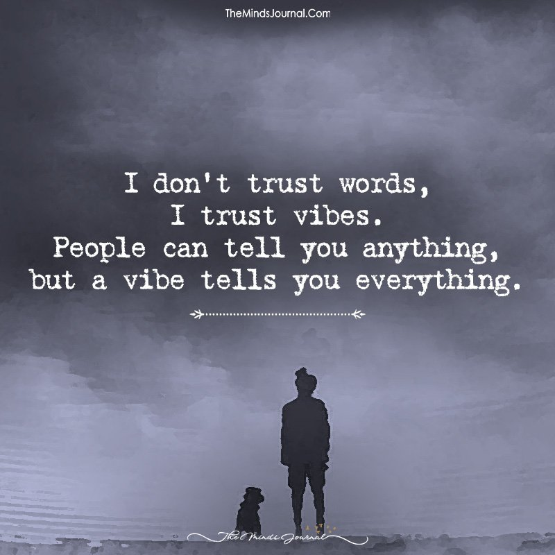 I Don't Trust Words, I Trust Vibes.