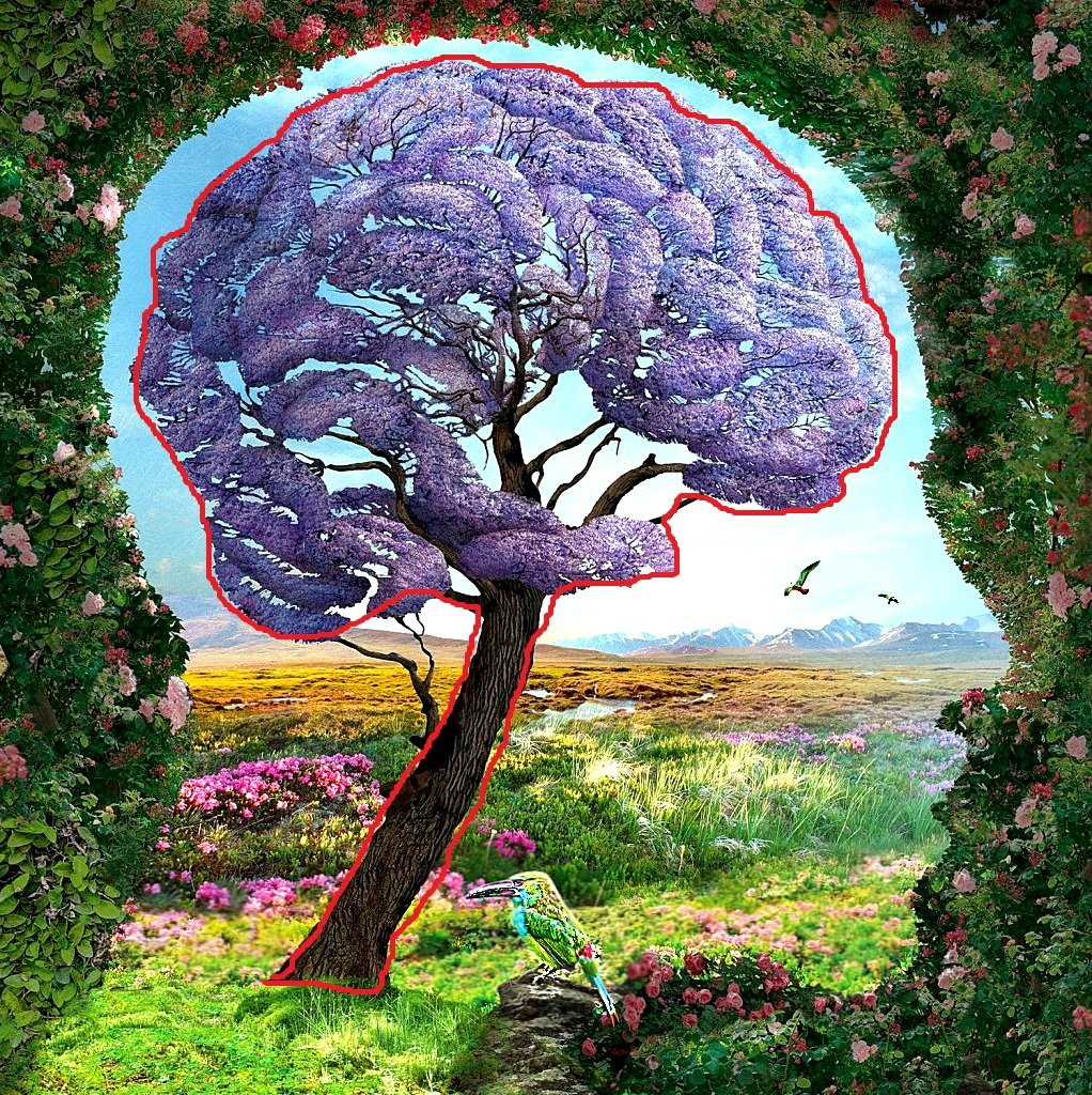 brain/tree