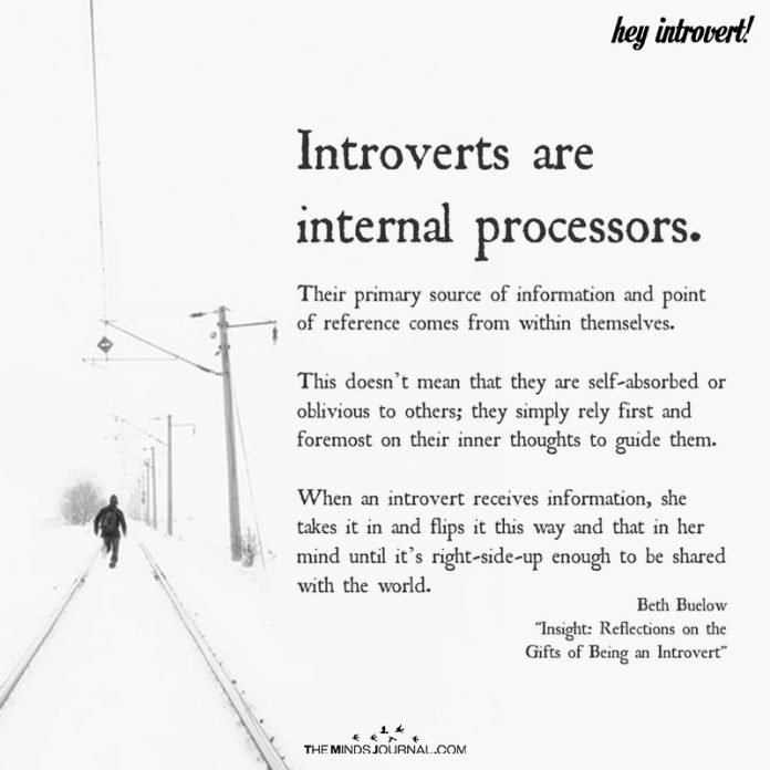 Introverts Are Internal Processors