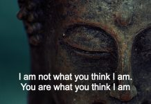 I Am Not What You Think I Am