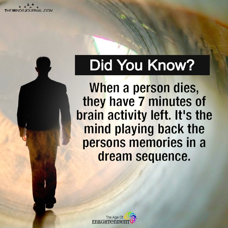When A Person Dies They Have 7 Minutes Of Brain Activity Left