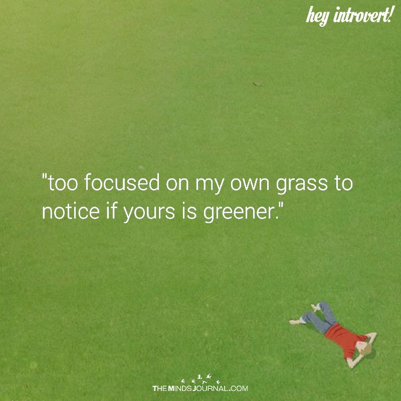Too Focused on My Own Grass