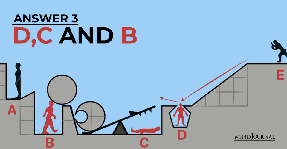 Answer 3 D C and B