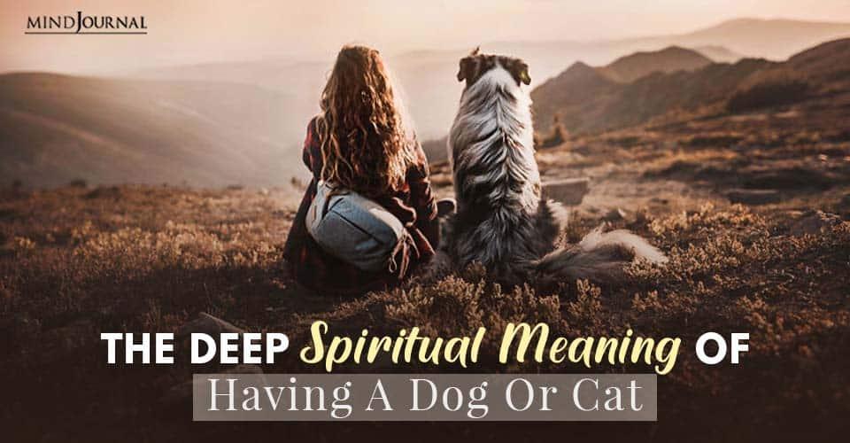 Deep Spiritual Meaning Having A Dog Or Cat Pet