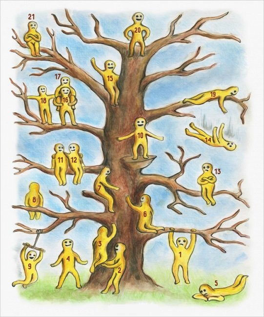The BLOB TREE Psycho-Emotional Test: What Kind of a Person You Are