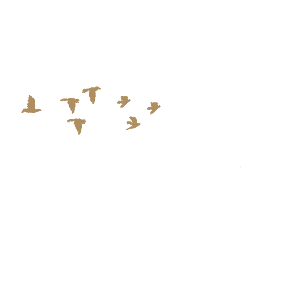 tmj-logo.png