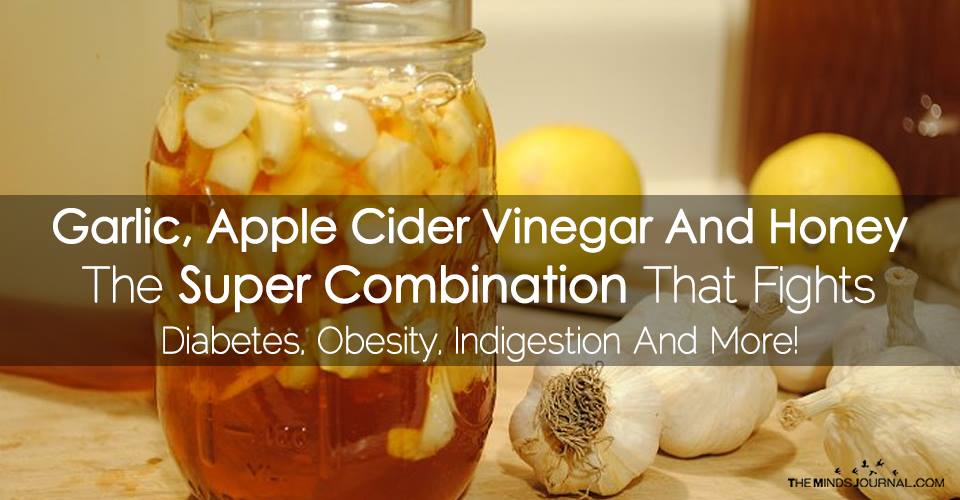 Garlic, Apple Cider Vinegar And Honey – The Super Combination Helping to Fight Diabetes, Obesity, Indigestion And More!