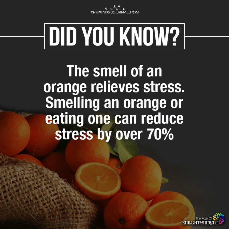 The Smell Of An Orange Relieves Stress