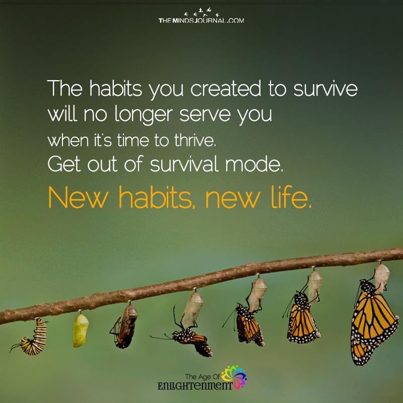 New habits, New Life