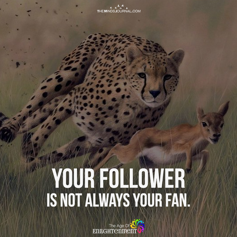 Your Follower Is Not Always Your Fan