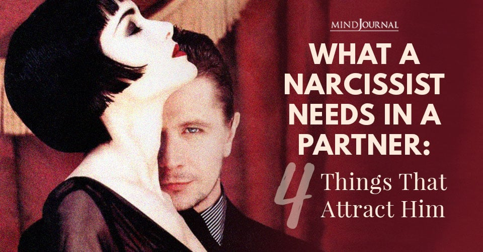 Narcissist Needs In Partner Things Attract Him