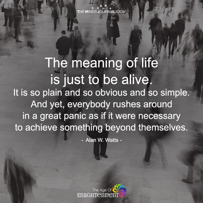The Meaning Of Life Is Just To Be Alive