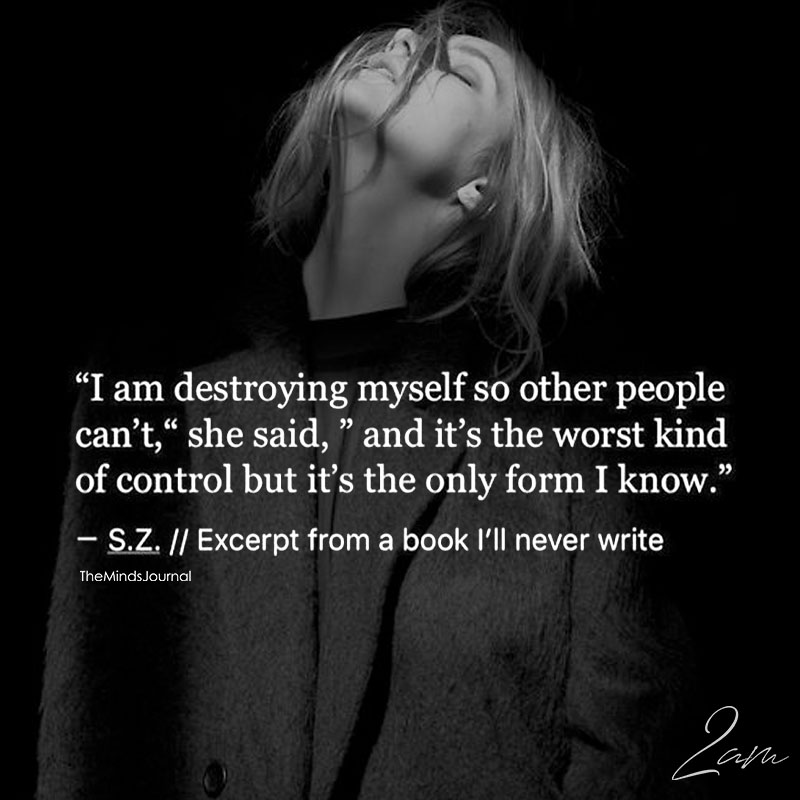 I Am Destroying Myself So Other People Can't