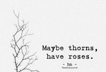 Maybe Thorns, Have Roses