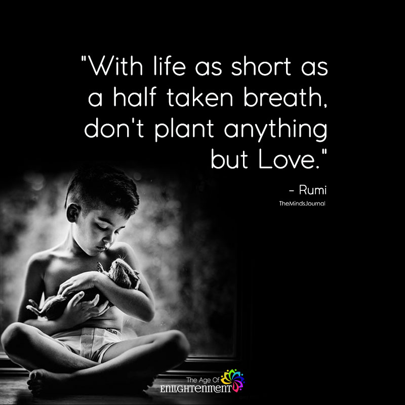 With Life As Short As A Half Taken Breath