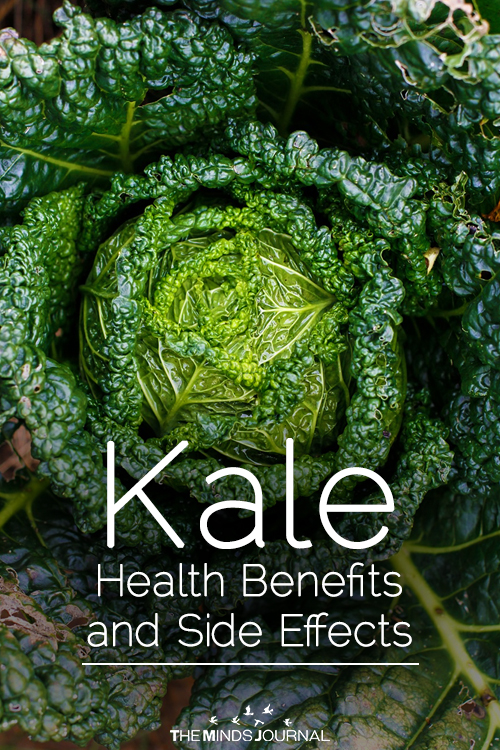 Kale Health Benefits and Side Effects pin