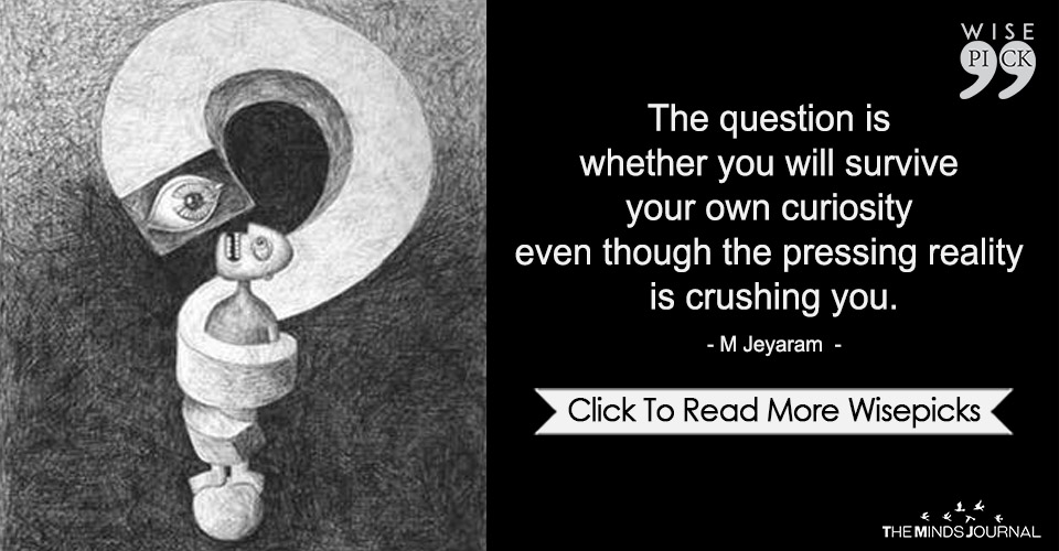 The Question Is Whether You Will Survive Your Own Curiosity
