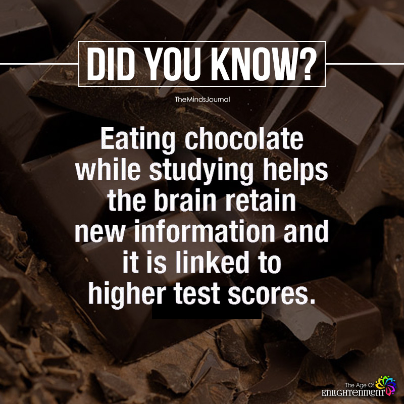 Eating Chocolate While Studying Helps The Brain Retain New Information