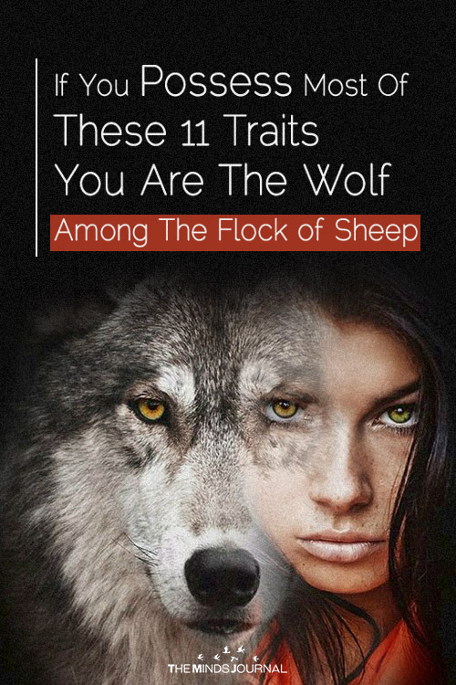 signs of a wolf personality