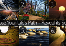 The Path You Choose Reveals Your Life Philosophy