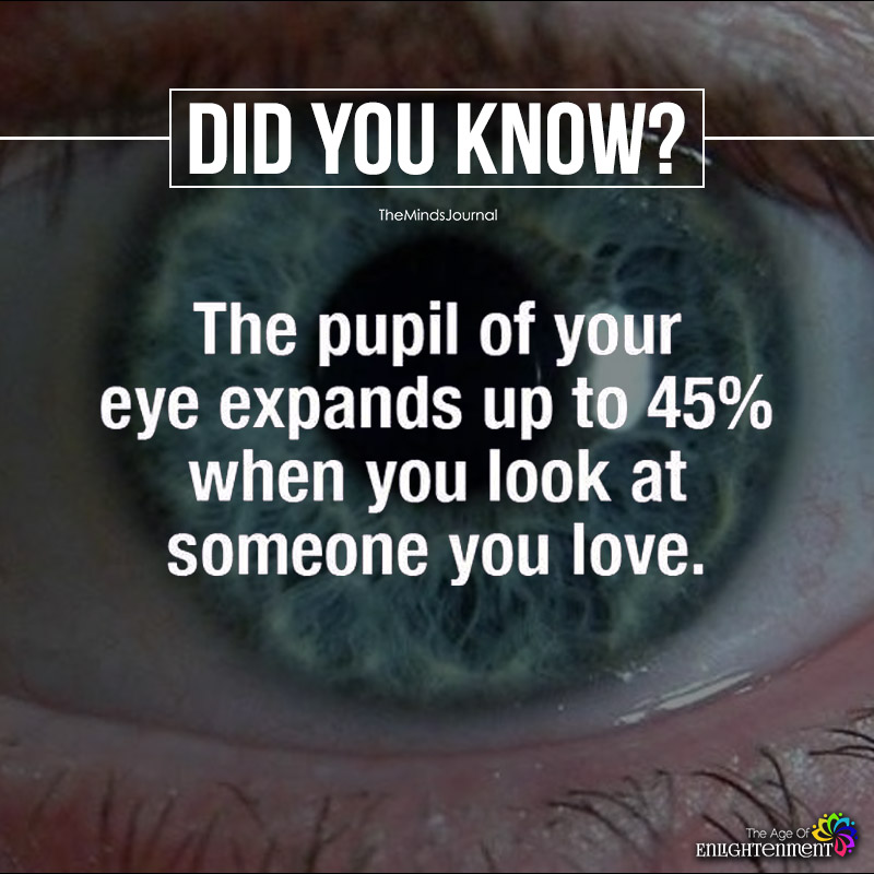 The Pupil Of Your Eye Expands Up To 45%