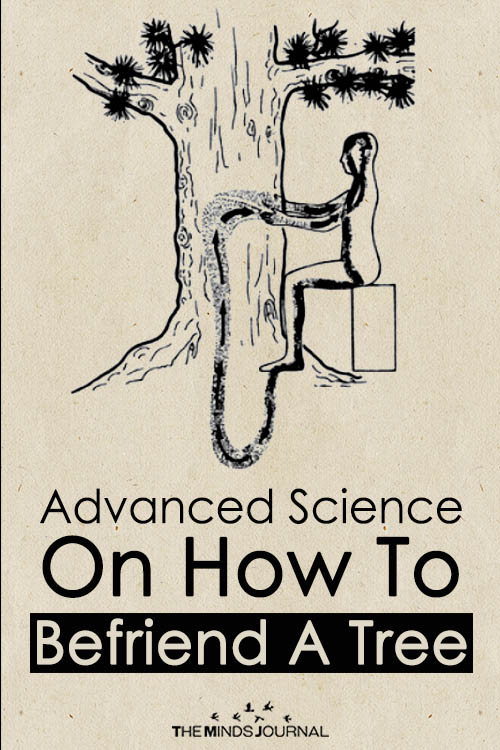 Advanced Science On How To Befriend A Tree