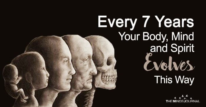 Every 7 Years Your Body, Mind and Spirit Evolves This Way