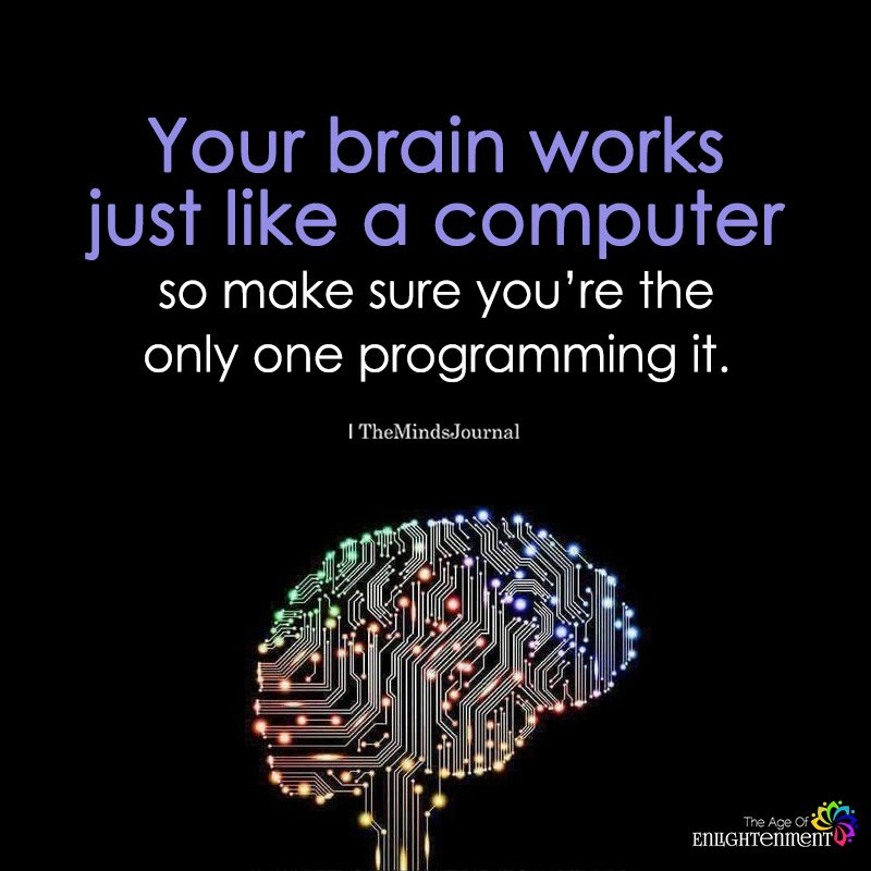 Your Brain Works Just Like A Computer