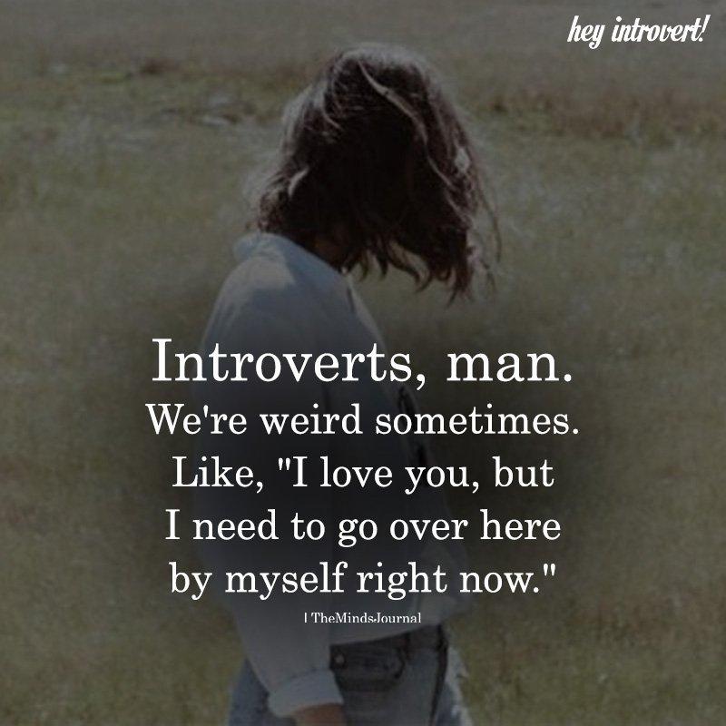 Introverts, Man. We're Weird Sometimes