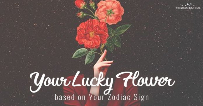 Your Lucky Flower based on Your Zodiac Sign