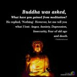 Buddha Was Asked, What Have You Gained From Meditation