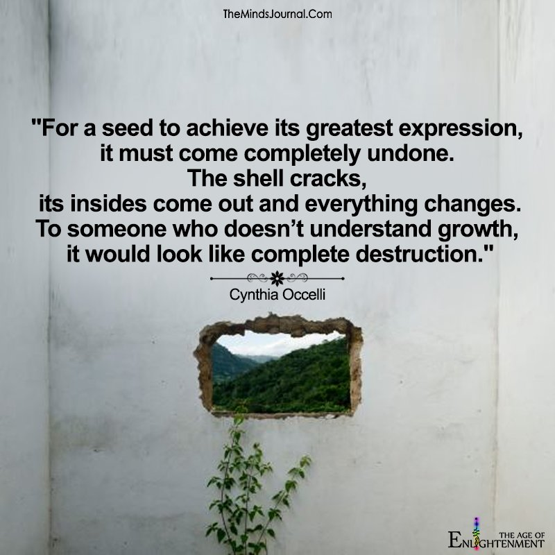 For A Seed To Achieve Its Greatest Expression