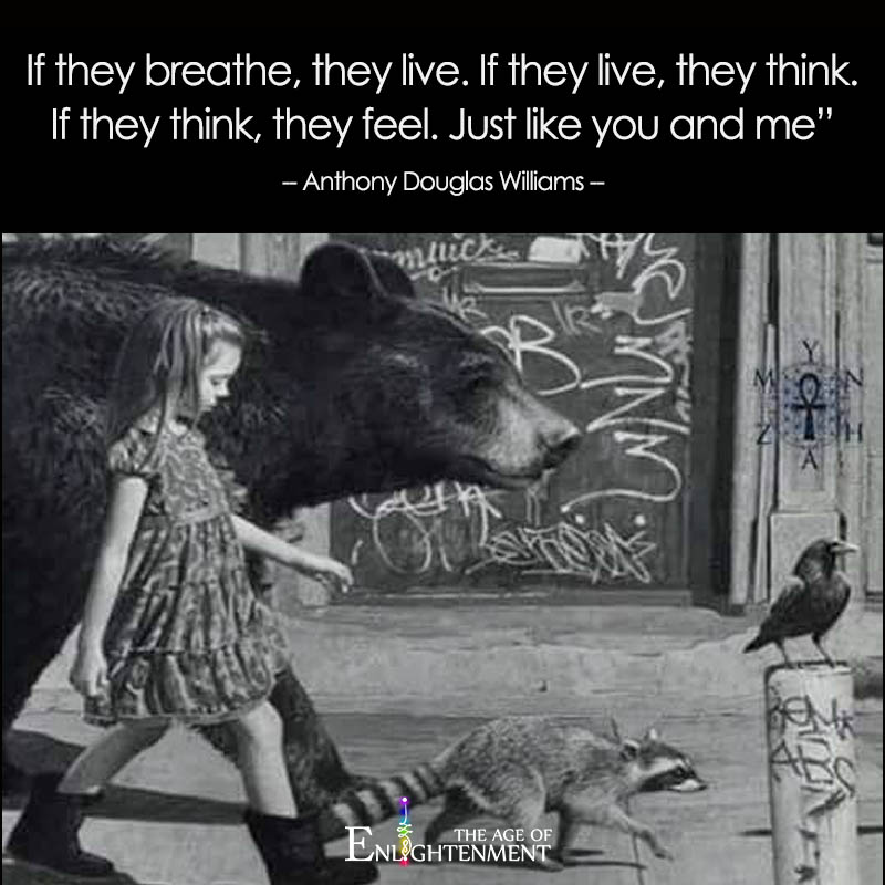 If They Breathe, They Live