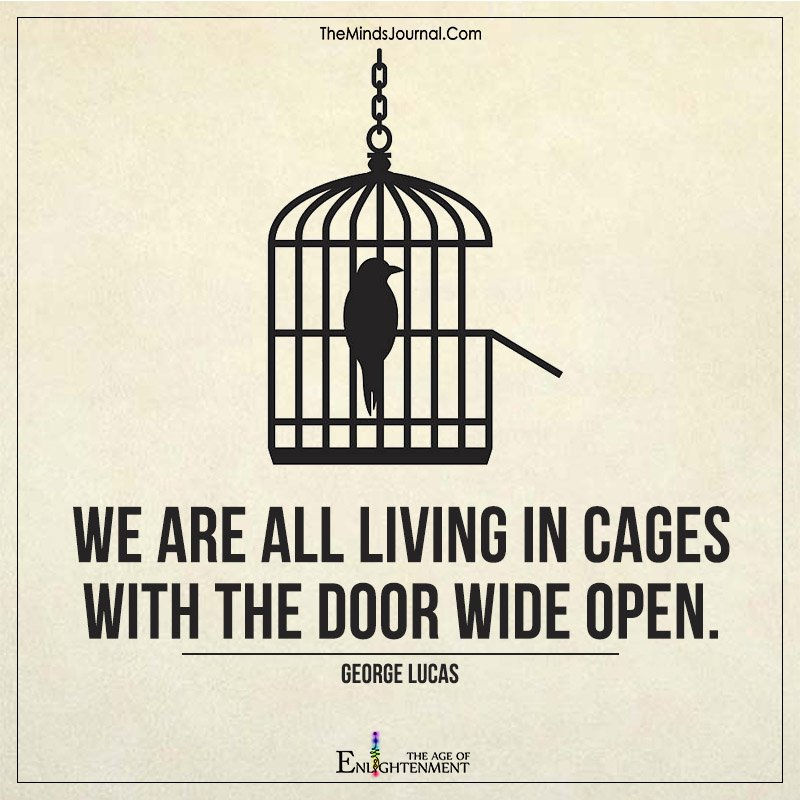 We Are All Living In Cages