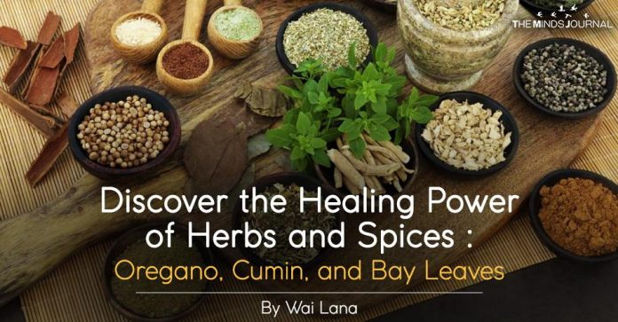 Discover the Healing Power of Herbs and Spices Oregano, Cumin, and Bay Leaves