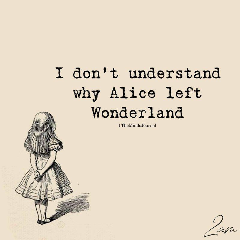 I Don't Understand Why Alice Left Wonderland